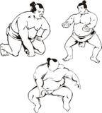 Sumo Stock Photos