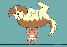 Sumo cat lifts the dog Royalty Free Stock Image