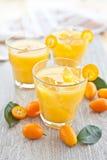 Sumo de laranja e kumquats Imagens de Stock