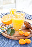 Sumo de laranja e kumquats Imagem de Stock