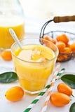 Sumo de laranja e kumquats Foto de Stock