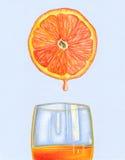 Sumo de laranja fresco ilustração stock