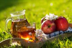 Sumo de maçã Fotografia de Stock Royalty Free