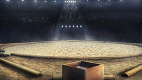 Sumo fachowa arena w świateł 3d renderingu Zdjęcia Stock
