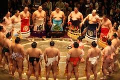 Sumo i Japan Arkivfoto