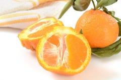 Sumo Oranges Stock Images
