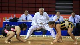 πάλη γυναικών sumo του s Στοκ εικόνα με δικαίωμα ελεύθερης χρήσης
