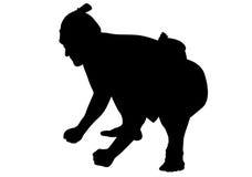 Sumo silhouette Stock Images