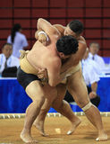 Sumo westlers in closed grip Royalty Free Stock Image