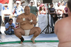 Sumo Wreslters Royalty Free Stock Photos