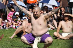 Sumo wrestler. On Japanese festival on July 31, 2011 in Vancouver, Canada Royalty Free Stock Photo