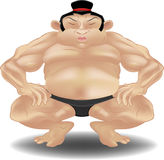 Sumo wrestler. A sumo wrestler stock illustration