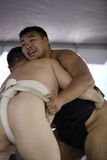 Sumo Wrestlers 25 Royalty Free Stock Photography