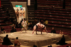 Sumo wrestlers practicing in empty arena Stock Photos
