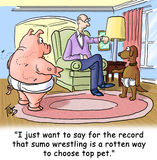 Sumo wrestling Royalty Free Stock Image