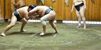 Sumoringkämpfer-Kämpfer tain in den Sumoställen, die für das Sumoturnier gehalten in Tokyo Japan sich vorbereiten stockbild