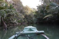 Sumpf-Fluss und ein Boot lizenzfreies stockfoto