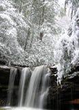 Sumpf-Gabel fällt, Zwilling-Fall-Nationalpark, WV #2 Stockfoto