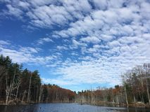 Sumpf im Herbst Stockfotografie
