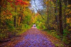 Sumpf-Kaninchen-Spur in Greenville South Carolina Sc stockbild