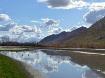 Sumpf u. Reflexion von Wolken auf Wasser Lizenzfreie Stockfotografie