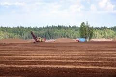 Sumpf und das Feld, auf denen die Produktion im blac durchgeführt wird Stockfoto