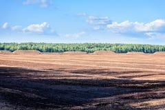 Sumpf und das Feld, auf denen die Produktion im blac durchgeführt wird Lizenzfreie Stockbilder