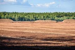 Sumpf und das Feld, auf denen die Produktion im blac durchgeführt wird Stockbild