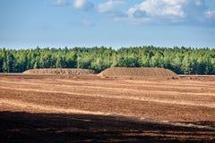 Sumpf und das Feld, auf denen die Produktion im blac durchgeführt wird Stockbilder