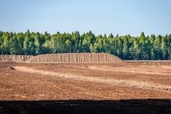 Sumpf und das Feld, auf denen die Produktion im blac durchgeführt wird Lizenzfreie Stockfotos