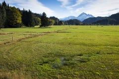 Sumpf und Wiese am Herbst mit Himmel Lizenzfreies Stockbild