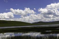 Sumpf unter dem blauen Himmel Stockfoto