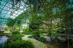 Sumpfgebiet-ökologischer Park Lizenzfreie Stockfotografie