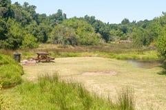 Sumpfgebiet des Groot-Flusses lizenzfreies stockbild