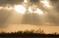 Sumpfgebiet-Himmel Lizenzfreie Stockfotografie