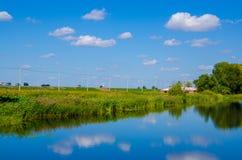 Sumpfgebiet unter blauem Himmel stockfotografie