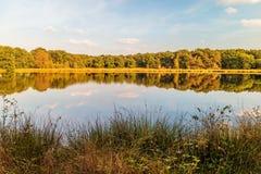 Sumpfgebiete in der Provinz von Drenthe, die Niederlande lizenzfreie stockbilder
