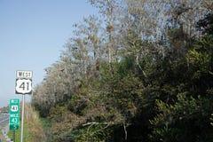 Sumpfgebiete, Florida, USA Stockfoto