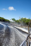 Sumpfgebiete, Florida, USA Lizenzfreie Stockfotografie