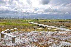Sumpfgebiete und Spuren bei Miranda Shorebird Centre stockfoto