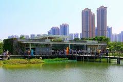 Sumpfgebietentdeckungsmitte am Sumpfgebietpark in Hong Kong Lizenzfreie Stockbilder