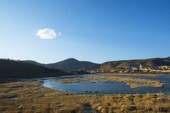 Sumpfgebietlandschaft Lizenzfreie Stockfotos