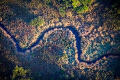Sumpfgebietstromvogelperspektive Lizenzfreie Stockbilder