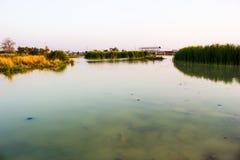 Sumpflebensunterhalt der Leute und die Schönheit der Natur Stockfoto