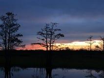 Sumpfsonnenuntergänge im Louisiana-Sumpf Lizenzfreie Stockfotos