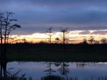 Sumpfsonnenuntergänge im Louisiana-Sumpf Stockfoto