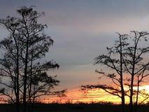 Sumpfsonnenuntergänge im Louisiana-Sumpf Lizenzfreies Stockbild