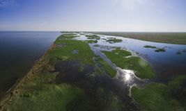 Sumpiga kuster av Zaisan sjön royaltyfri foto
