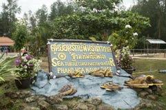 Sumpsköldpaddalantgård, för underhållet av befolkningen royaltyfria foton