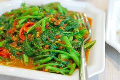 Sumptuous Chinese style spicy vegetables Stock Image